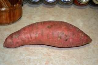 Рецепта за Ципура на фурна със сладки картофи соте стъпка 1
